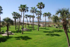 Galvestonian dune walkover