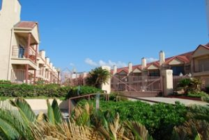 Palms Condominiums