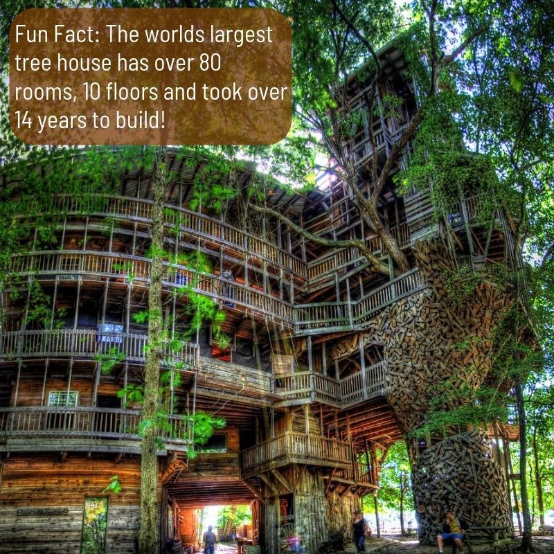 Worlds largest treehouse