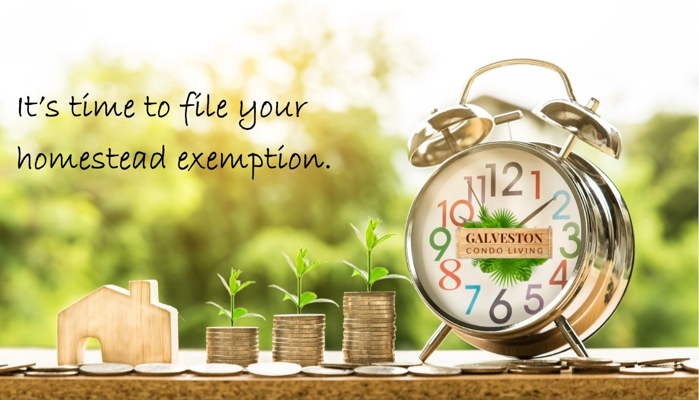homestead exemption reminder